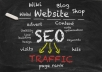 provide UNLIMITED Targeted Traffic one month