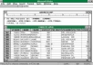 DATA ENTRY - COPYING & PASTING - EXCEL