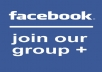 facebook account have joined to 500 facebook groups