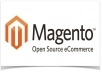 someone to take care of some issues on my Magento website