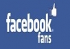 50,000 facebook page likes for max. $50.00