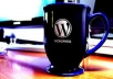 wordpress developer for work