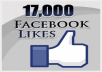 17000 Facebook Likes on 17 Facebook fan pages (1000 each)