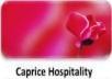 Website for Hospitality Service