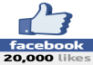 20,000 Facebook Page Likes
