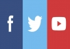FB follows & comment likes, Twitter follows & likes, Youtube channel follows and video likes
