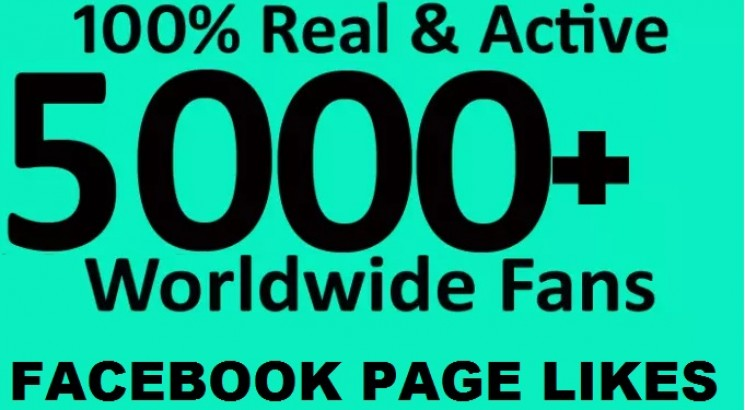 I will give 5000 Facebook fanpage likes free 1000 instagram